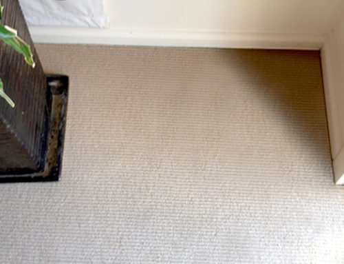 Carpet Water Damage Sydney