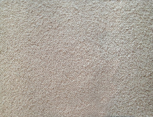 Pulled Threads Carpet Repair In Sydney